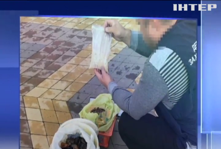 Полиция конфисковала партию янтаря на полмиллиона гривен