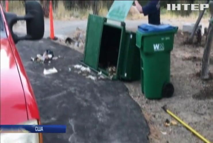 Ведмежат визволили із сміттєвого полону (відео)