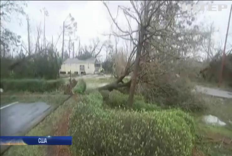 """Ураган """"Майкл"""": у Флориді людину вбило деревом"""