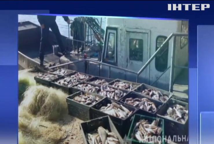 На Полтавщині браконьєри виловили риби на мільйон гривень