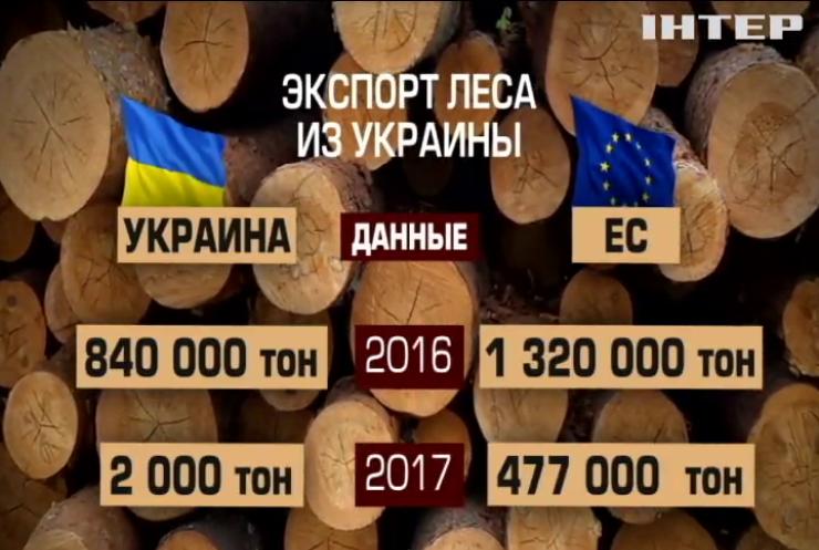 """Юрий Бойко: Власть """"крышует"""" незаконную вырубку леса"""