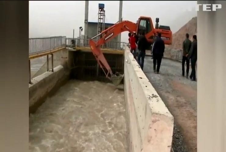 У Китаї працівники електростанції врятували ведмедя (відео)