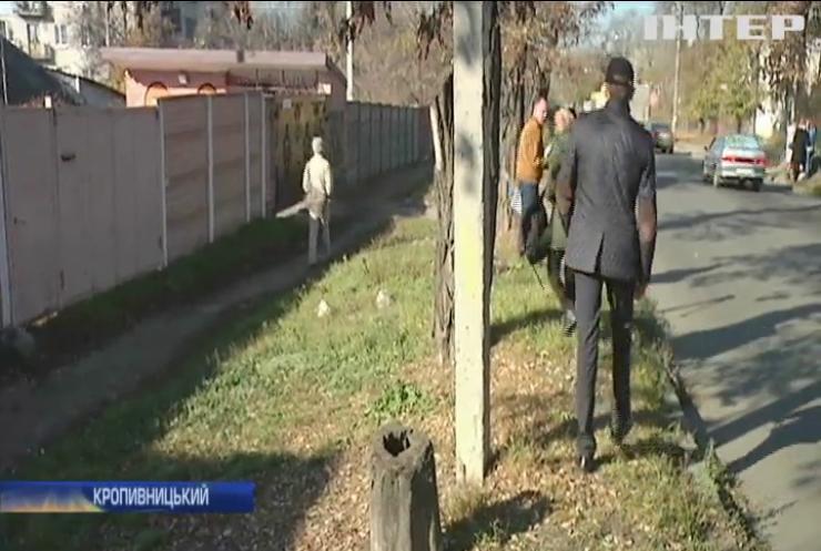 Жителі Кропивницького обурені масовим вирубуванням дерев
