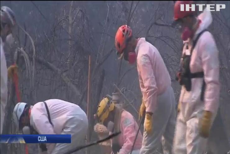Пожежі в Каліфорнії: зросла кількість жертв