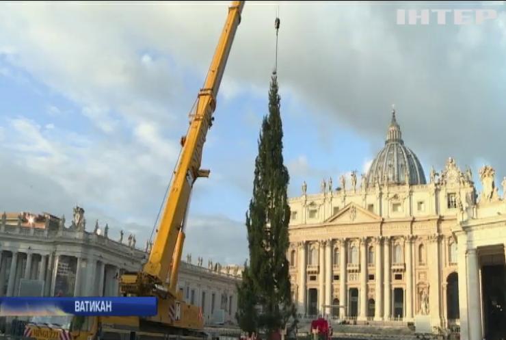 У Ватикані встановили різдвяну ялинку