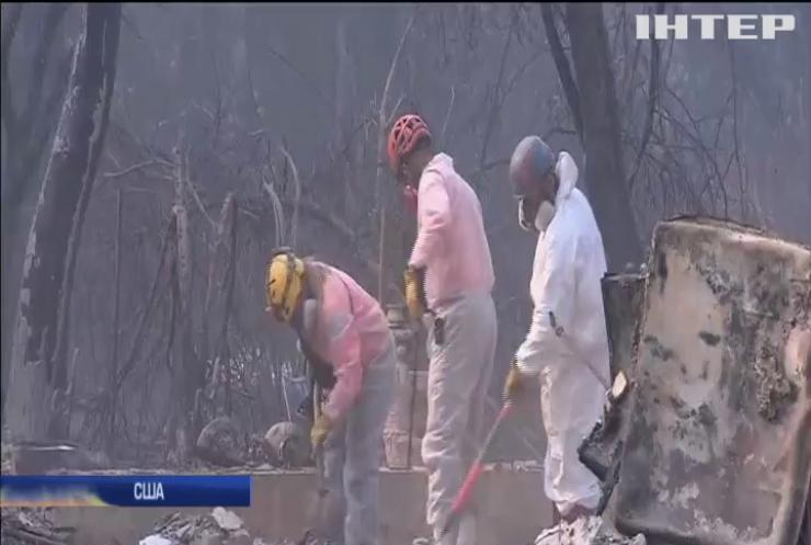 Пожежі у Каліфорнії вдалося взяти під контроль