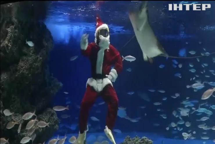 Санта-Клаус з оленем пірнули у акваріум Токіо