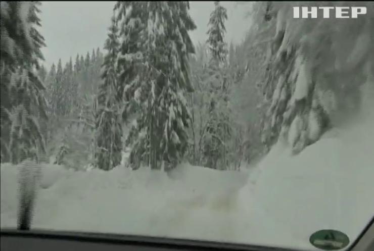 У Норвегії лавина поховала під собою чотирьох лижників