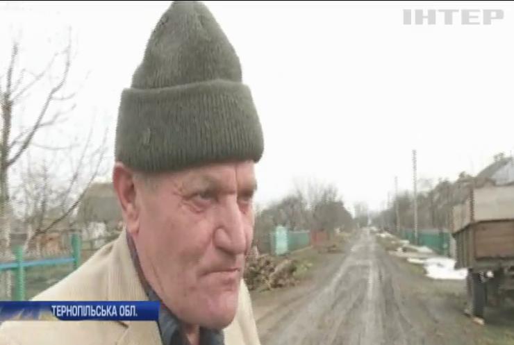Жителі Тернопільщини потерпають від нападів вовків