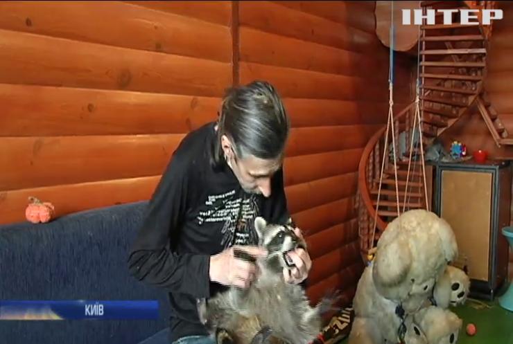 Лікар-ветеринар облаштував вдома оселю для єнотів