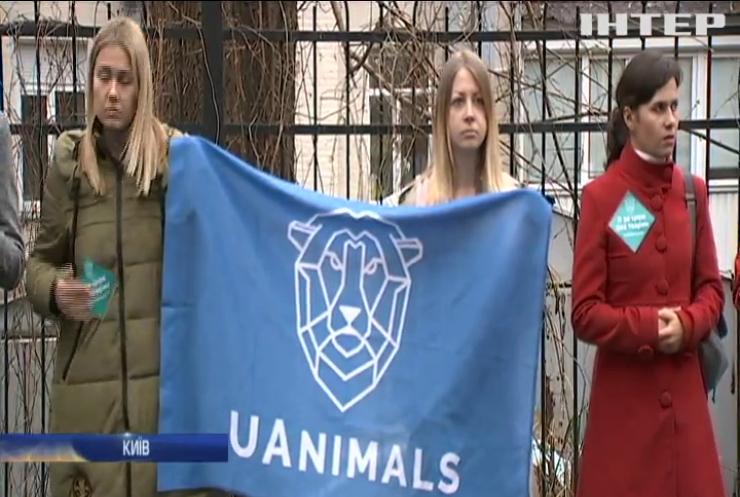 В Україні заборонили пересувні цирки з тваринами