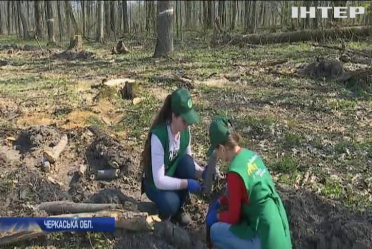 На Черкащині стартувала масштабна акція з висадження дерев