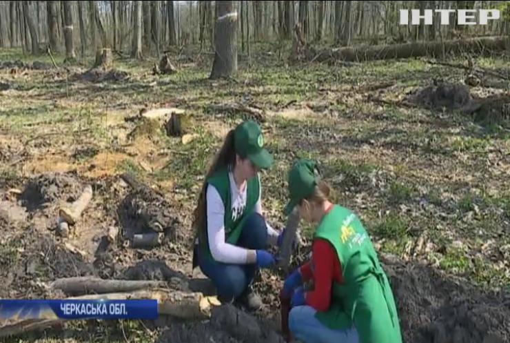 Черкаські діти підтримали акцію з висадження дерев