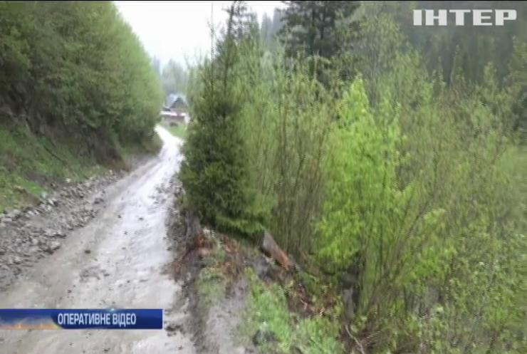 ДТП на Прикарпатті: автівка з туристами зірвалася у прірву