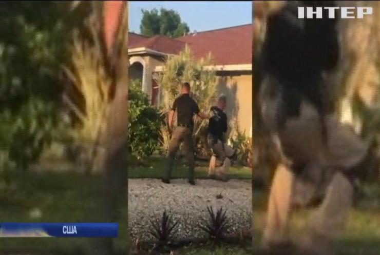У Флориді на подвір'ї знайшли алігатора