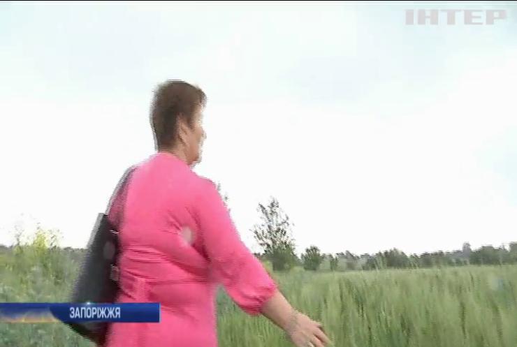 Хто привласнив землю ветеранів АТО у Запоріжжі?