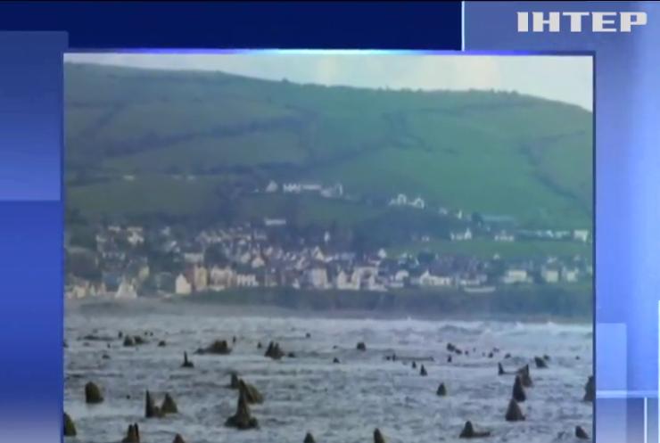 У Вельсі море оголило скам'янілий ліс