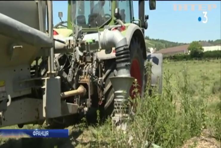 Рекордна спека: у Франції вводять обмеження на воду