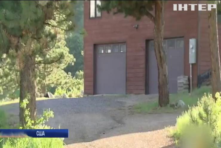 У штаті Колорадо ведмідь улаштував ДТП