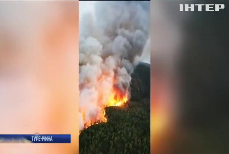 У Туреччині спалахнула потужна лісова пожежа