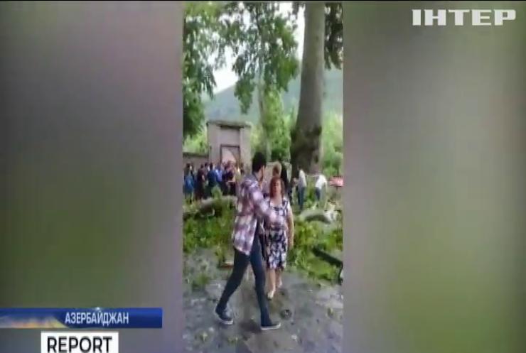 В Азербайджані гілка п'ятсотрічного дерева притисла туристів