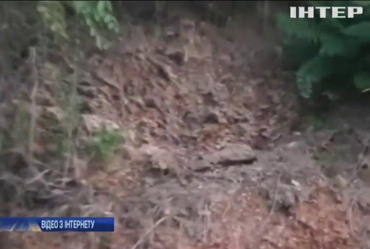В Одесі обвалився ґрунт біля пансіонату
