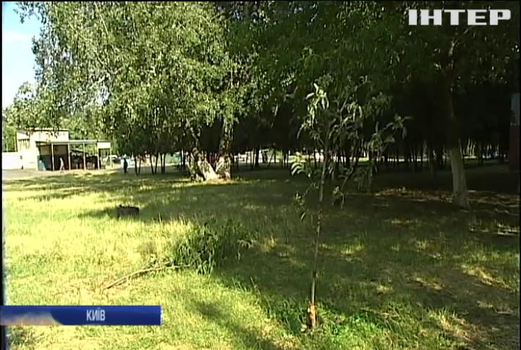 В одному з районів столиці за ніч зрубали понад п'ятдесят дерев