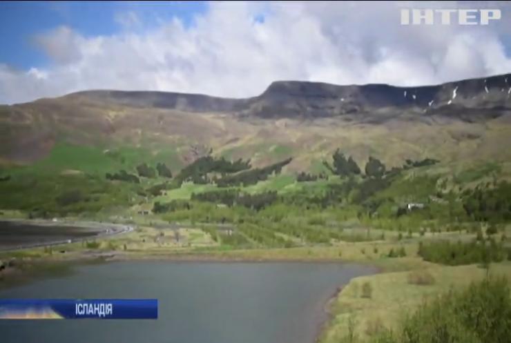 Влада Ісландії запровадила програму з відновлення лісів
