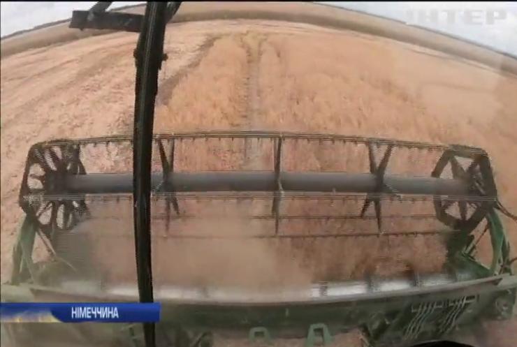 Європейські фермери рахують збитки від аномальної спеки