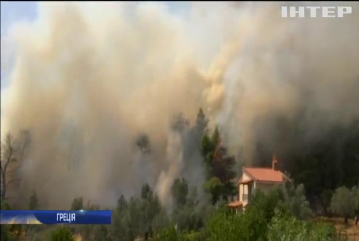 Грецький уряд закликає посилити боротьбу з лісовими пожежами