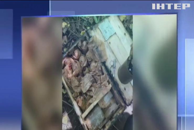 Небезпечна знахідка: на Житомирщині виявили арсенал боєприпасів
