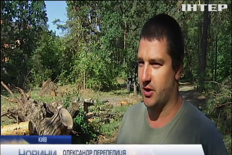 У лісопарках столиці сотні дерев повиривало з корінням через сильні удари стихії