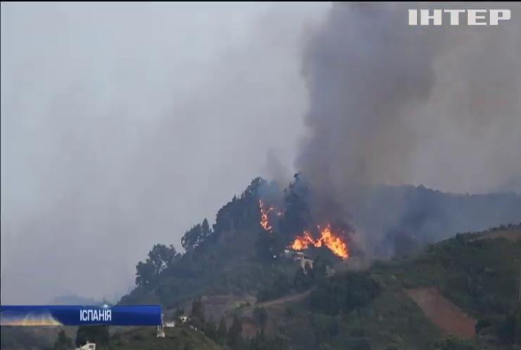 Канарські острови у вогні: лісові пожежі спалахнули з новою силою