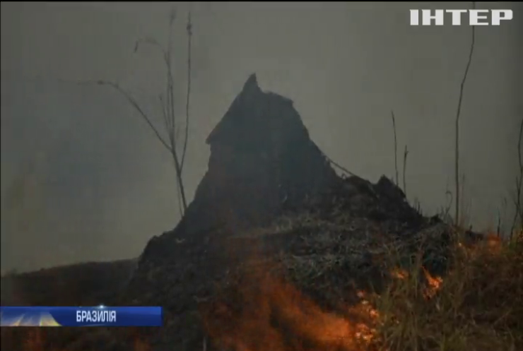 Бразилія залучає армію до гасіння масштабної пожежі в Амазонії