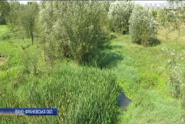 В Україні катастрофічно пересихають та міліють річки