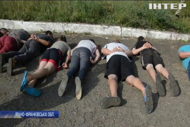 На Прикарпатті поліція виявила найбільшу в Україні плантацію заборонених рослин