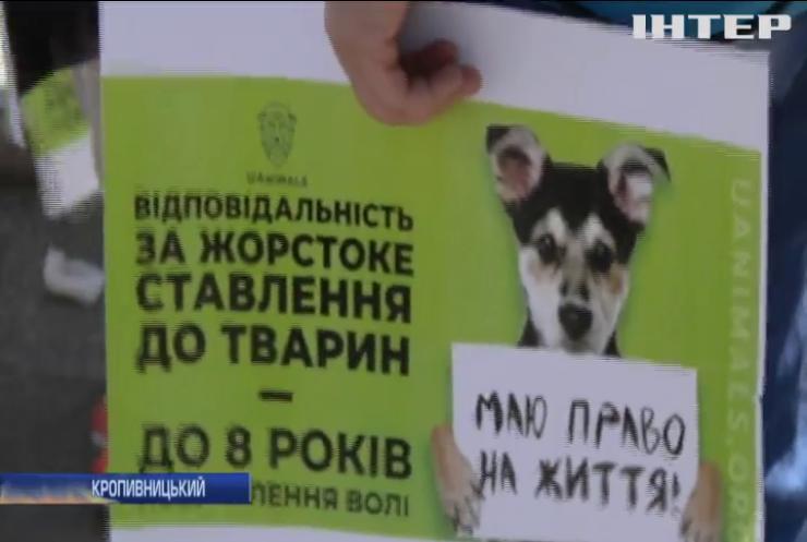 В Україні пройшли марші на підтримку тварин