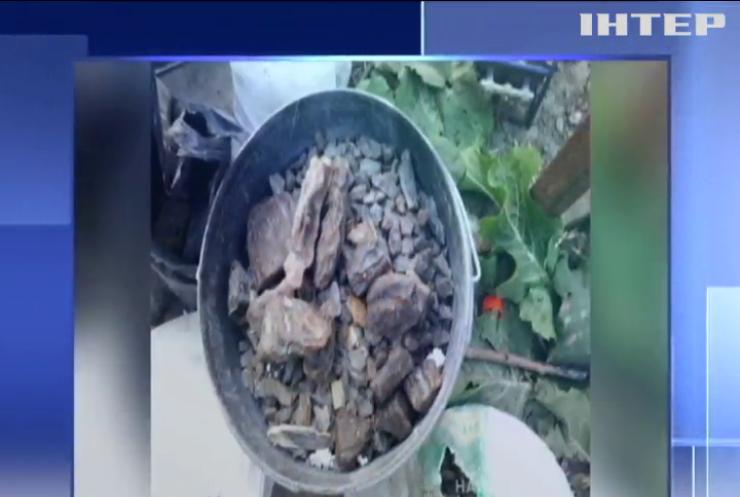 У жителя Рівненщини вилучили 40 кг бурштину
