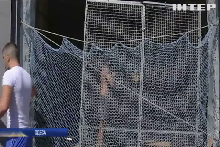 Одеському цирку заборонили використовувати у виставах диких тварин