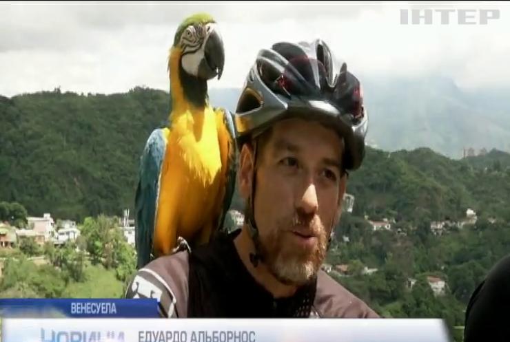 Венесуелець катає папугу на велосипеді вулицями Каракаса