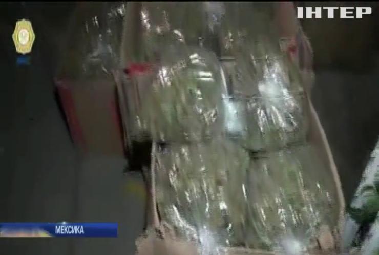 Тонни марихуани: поліція Мехіко викрила наркокартель