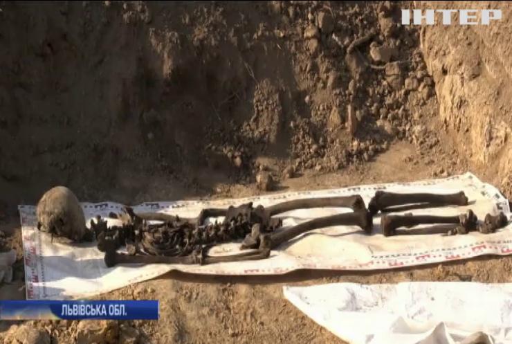 На Львівщині біля в'язниці знайшли тіла жертв НКВС