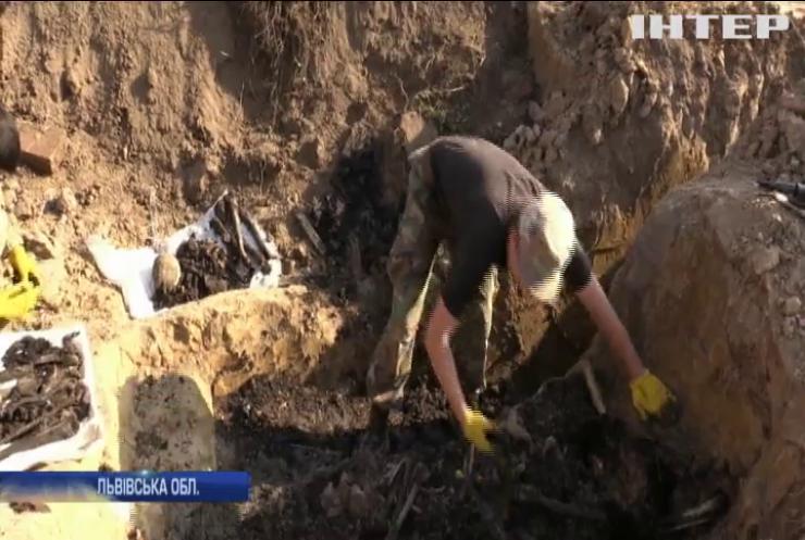 Археологи знайшли останки жертв НКВС на Львівщині