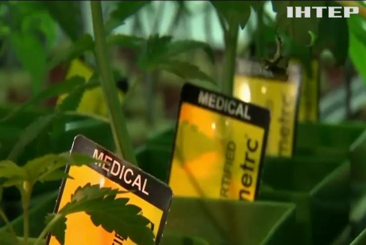 Чому Україні слід легалізувати марихуану
