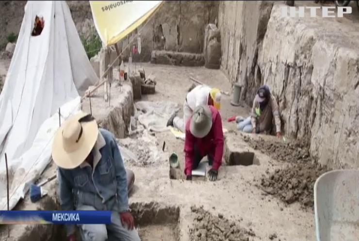 У Мексиці знайшли кістки сотень мамонтів
