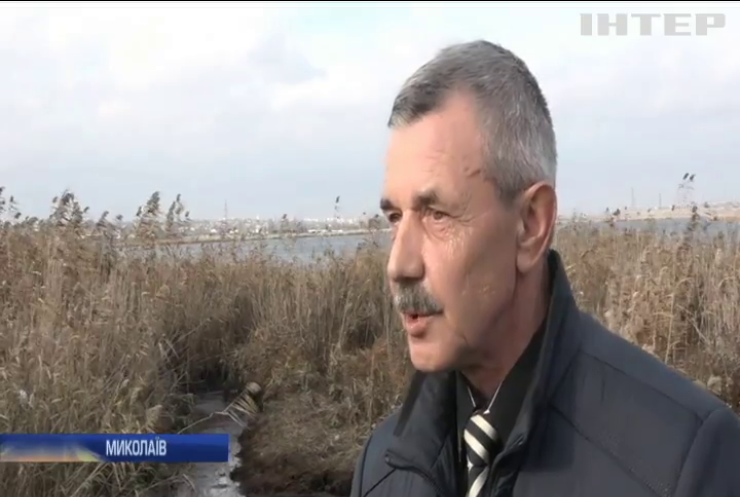 На Миколаївщини намагаються очистити річку від нафтопродуктів