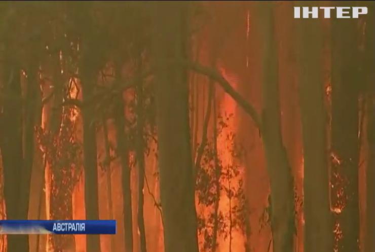 В австралійському штаті запровадили надзвичайний стан через масштабні пожежі