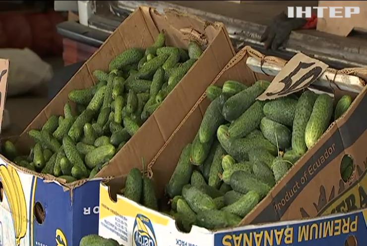 Овочева криза: чому українські фермери програють битву за ринок?