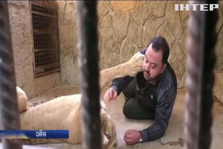 Житель Дамаска влаштував вдома притулок для хижаків
