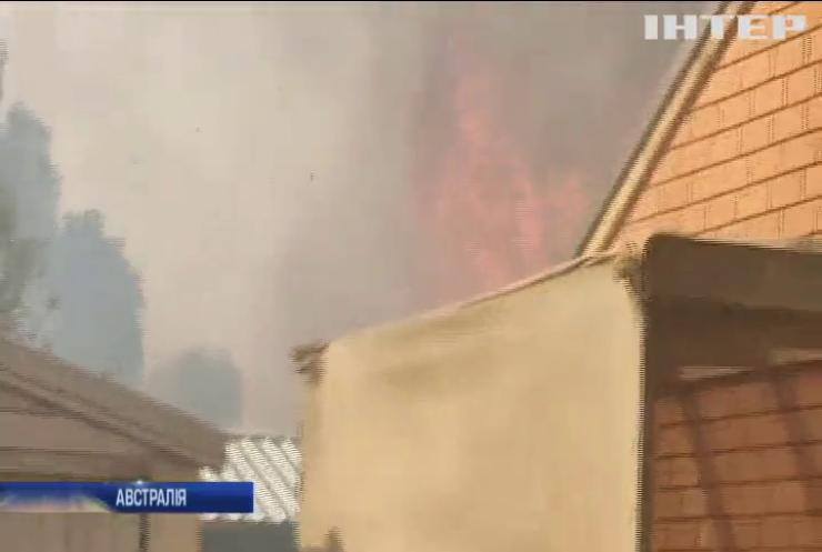 Лісові пожежі в Австралії наблизилися до житлових будинків